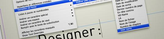 custom Variables Illustration