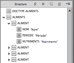 InDesign XML structure